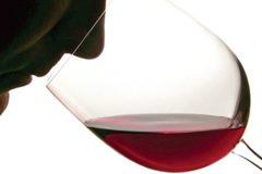 smelling_wine