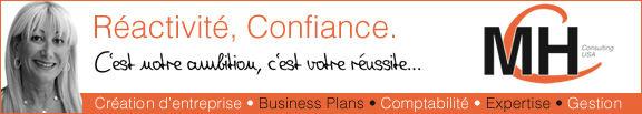 mch-consulting-monique-herzstein-comptable-francais-miami-2-576